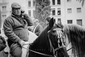 Benissa Horse Fair
